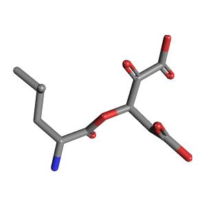 Leucine-2-oxoglutaric acid 3D structure